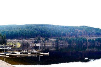Vistas espectaculares embarcadero montes lago Titisee Selva Negra