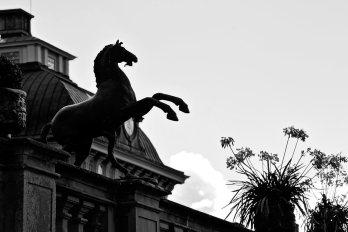 Escultura caballo exteriores Palacio real Drottningholm Suecia