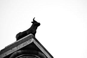 Fuente torico mirando horizonte plaza Teruel blanco y negro
