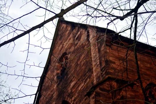 Perspectiva ramas árboles iglesia fachada marrón centro histórico Offenburg