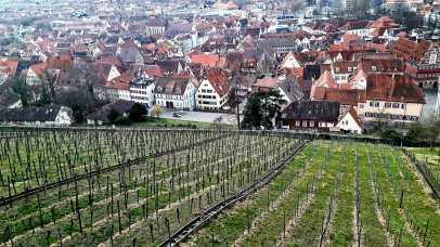 Viñedos vista panorámica Esslingen am Neckar Alemania