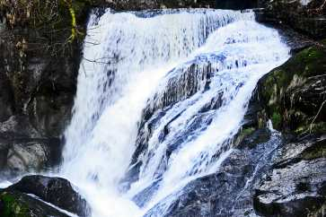 Caída masiva agua cascadas Triberg vegetación Selva Negra Alemania