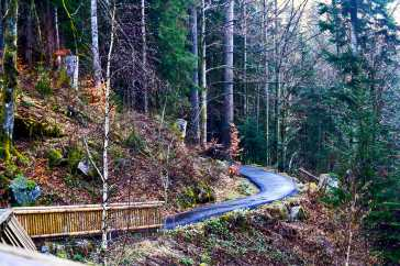 Sendero trekking vegetación cascadas Triberg Selva Negra Alemania