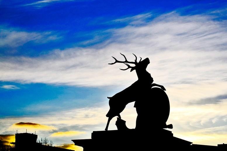 Luces y sombras reflejo escultura ciervo Schlossplatz Suttgart Alemania