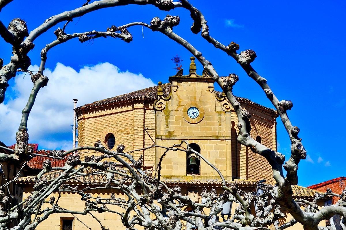 Ramas encuadre fachada Nuestra Señora Virgen de la Plaza Elciego
