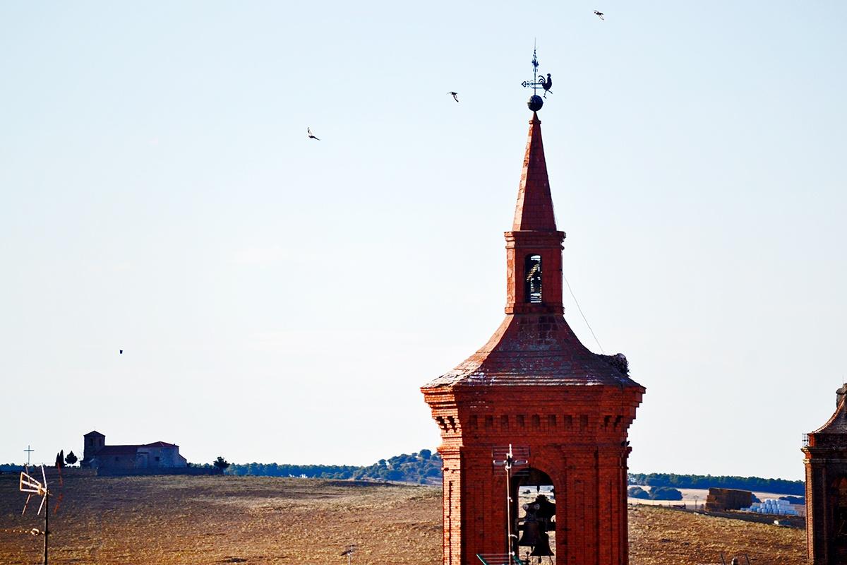 Aves sobrevolando torre campanario santuario de Santa Teresa Alba de Tormes