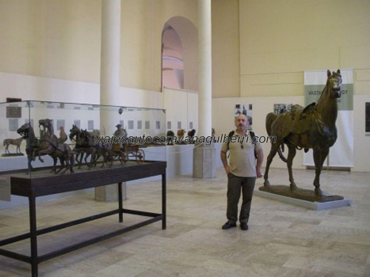 Museo del Caballo Magiar