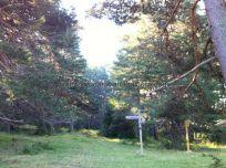 Valle Roncal camino de Belagua