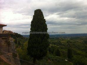 Italia 201409 Toscana Monterrigioni cf 21