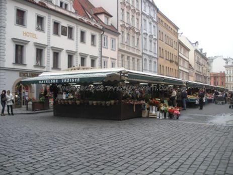 mercado frutas, verduras,....