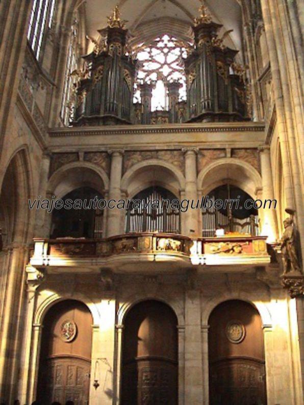 órgano Catedral San Vito