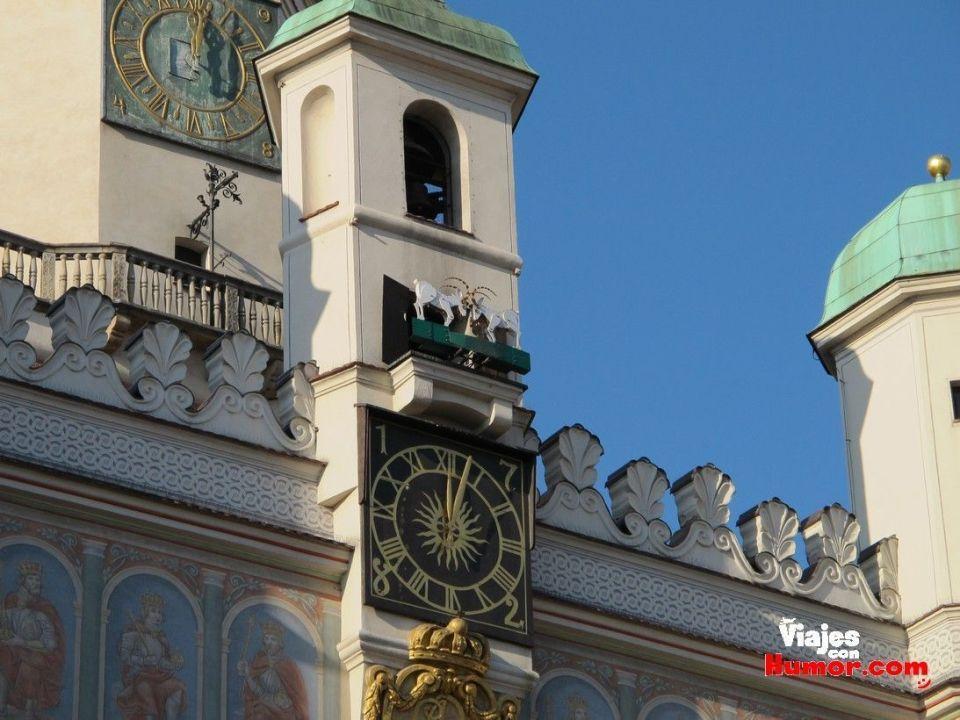 cabritos torre del ayuntamiento de poznan