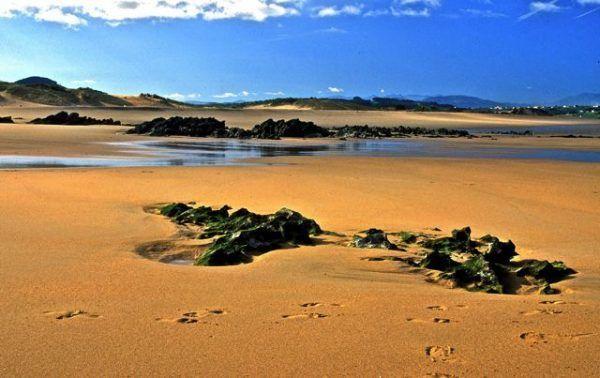 Parque Natural de las dunas de Liencres, Cantabria