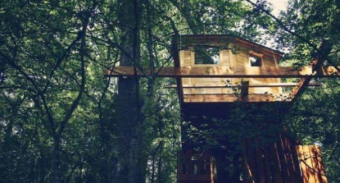 Basoa Suites, Casas en lo Alto de un Árbol