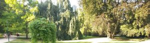 Parc de la Pèpinniére. Nancy (Francia)