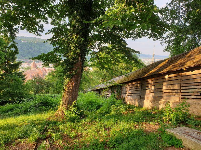 Scara Acoperitá que da acceso a la zona superior de la ciudadela, Sighisoara (Rumanía)
