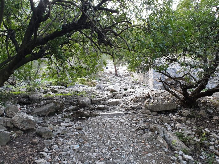 Camino hacia la Quimera, Çirali (Turquía)