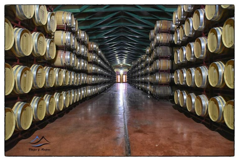 Grandes-vinos-cariñena