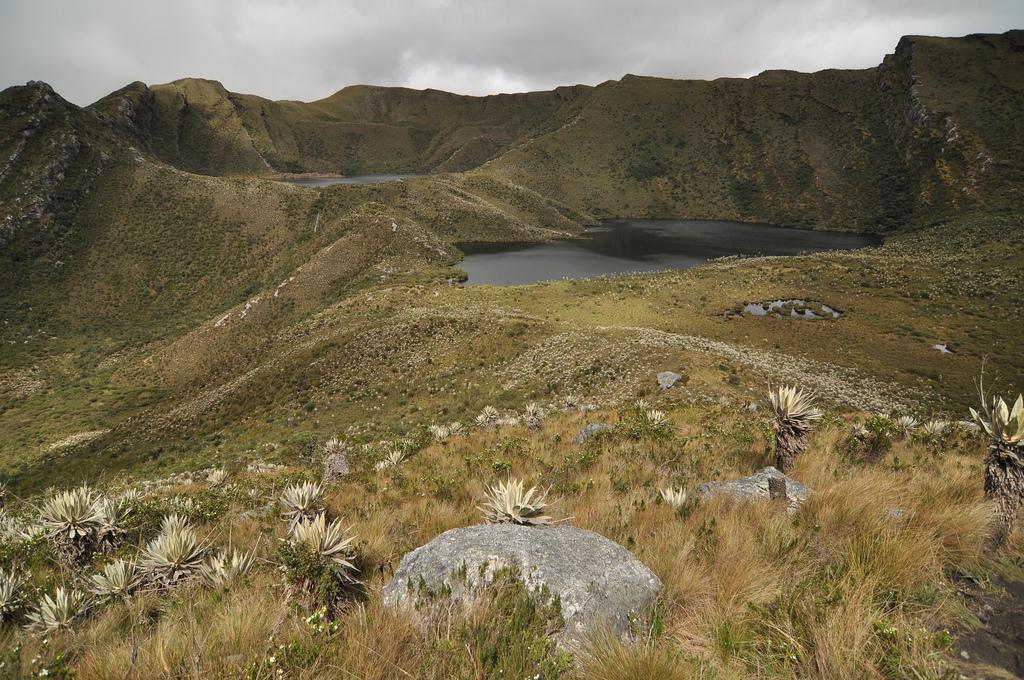 Parque-Nacional-Chingaza