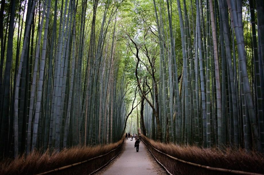 sitios-que-no-te-puedes-perder-en-japon-arashiyama