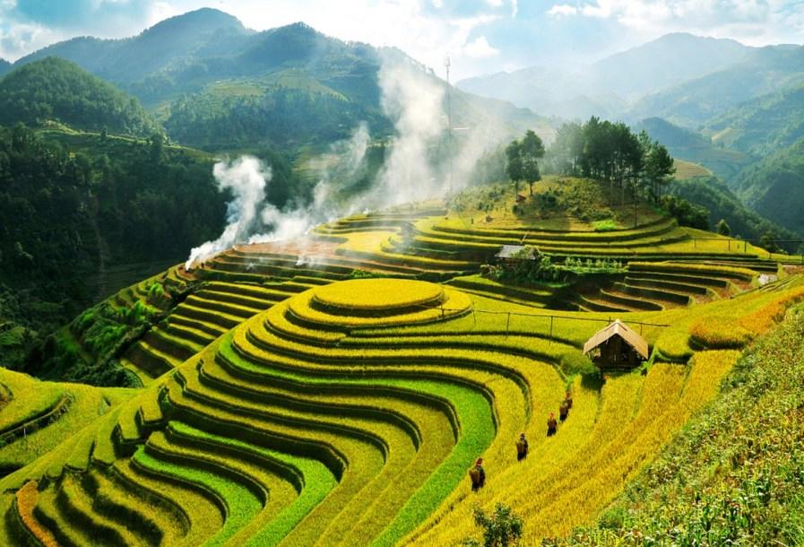 huong-lua-mu-cang-chai-1412304071