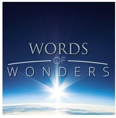 Words of Wonders - ristikkopeli, Words of Wonders - ristikkopeli