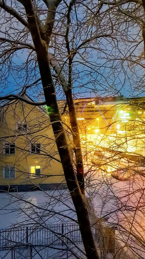 Diginomadien maailma - Diginomadi ja korona, Viro