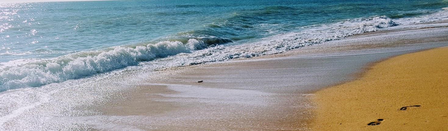 päivän inspiraatio - meri banner