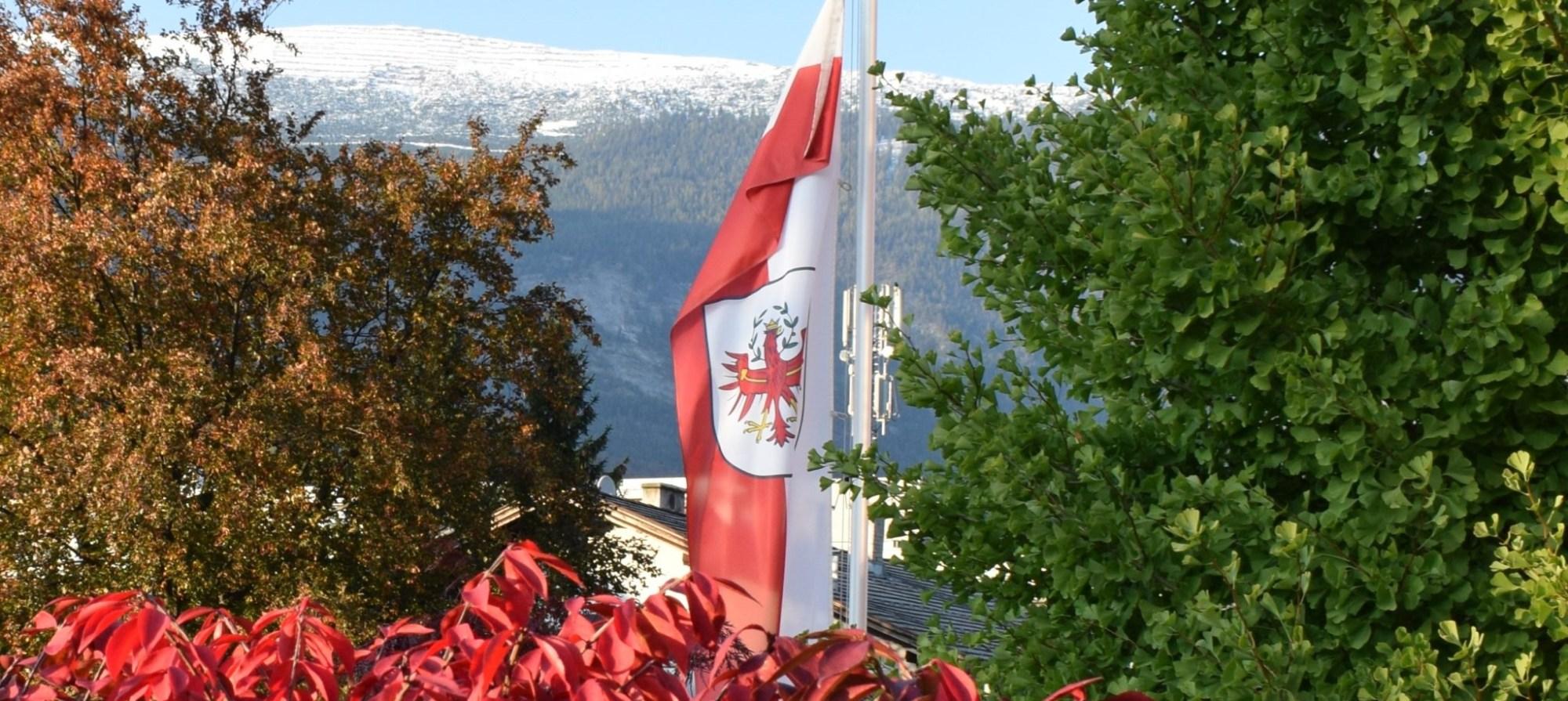 fin in tirol guest blog banner