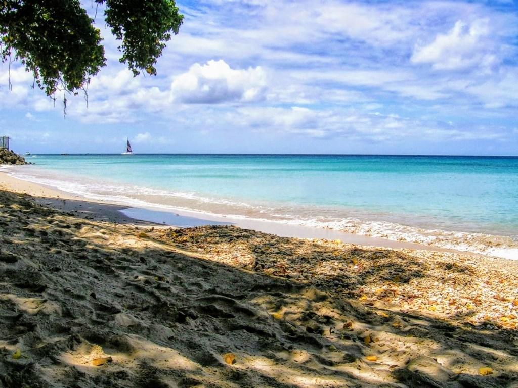 Ensimmäinen ulkomaanmatkani, Barbados