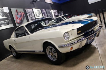 Shelby Heritage - 15