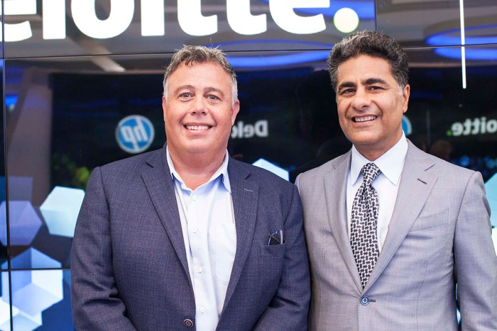 HP, Deloitte CEOs