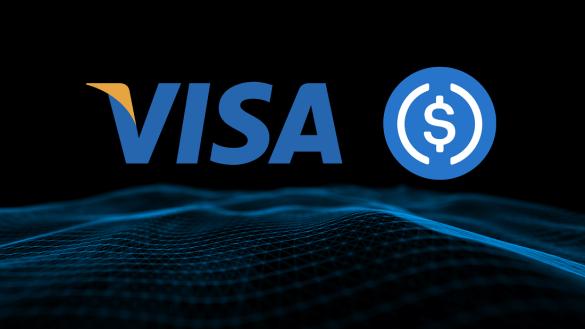 Visa Usdc