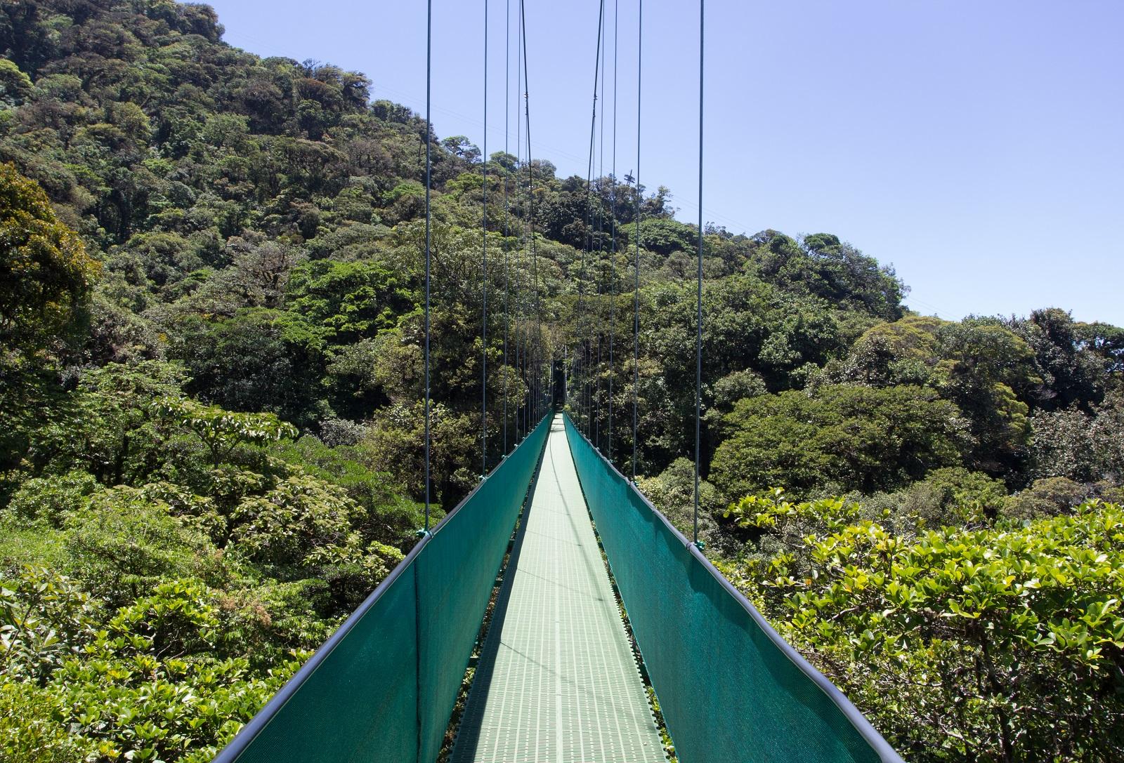 pont penjant monteverde