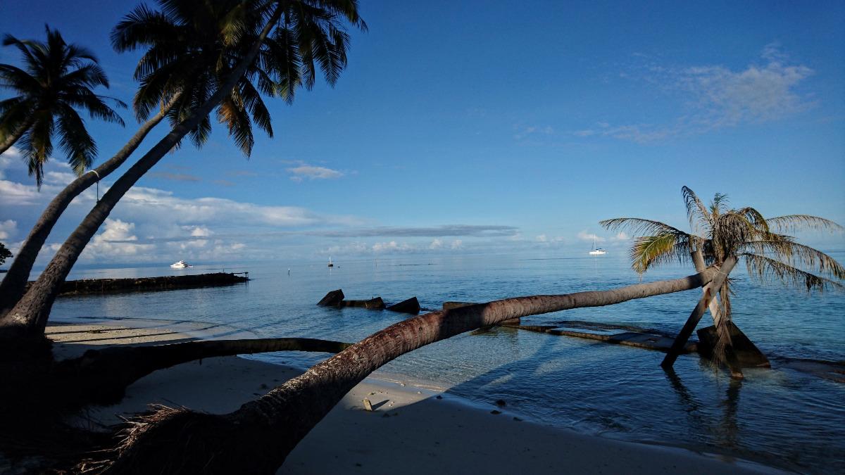 viatjapelmon-maldives-platja