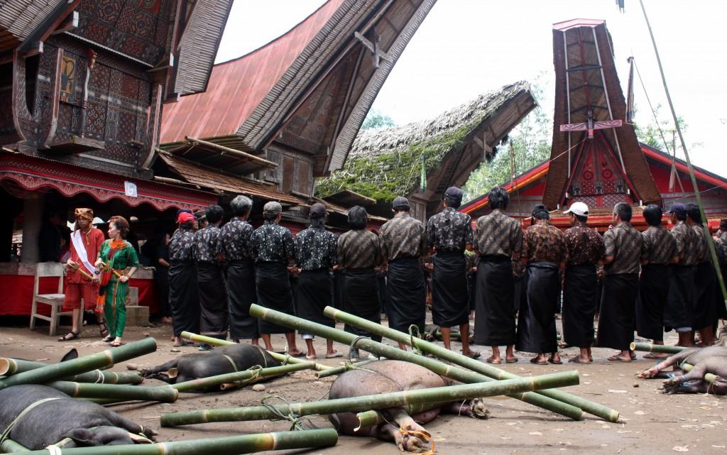 2013-08-06 (Toraja cerimònia)