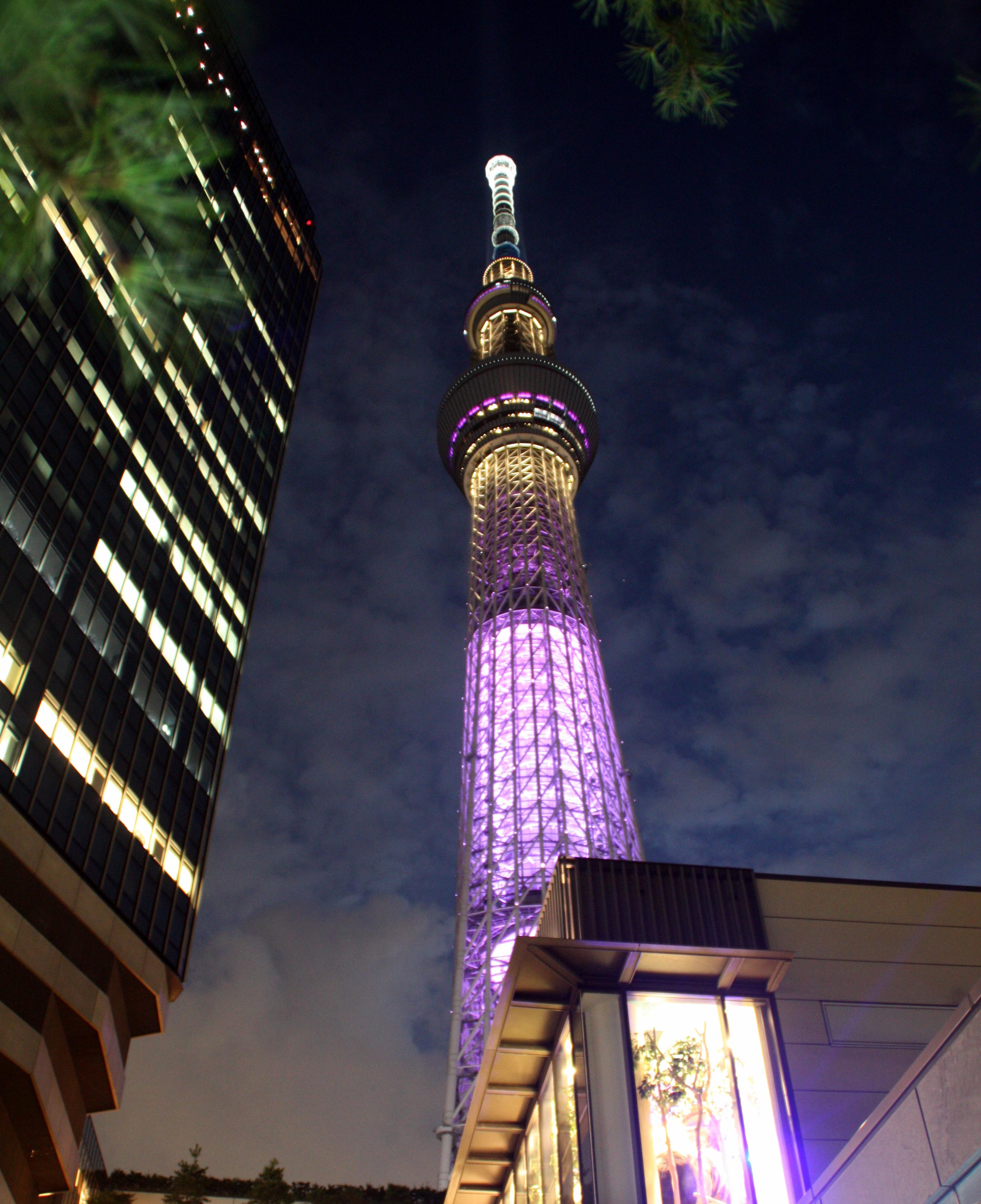 2015-08-13 (Skytree)