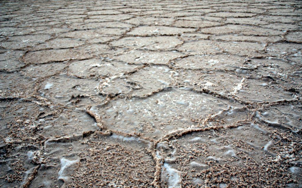 2016-07-21-detall-del-llac-salat-de-maranjab