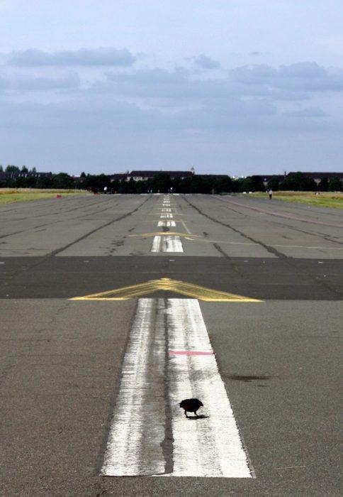 Pista Tempelhof