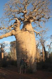 2017-07-28 (david i Eli a baobab gegant)