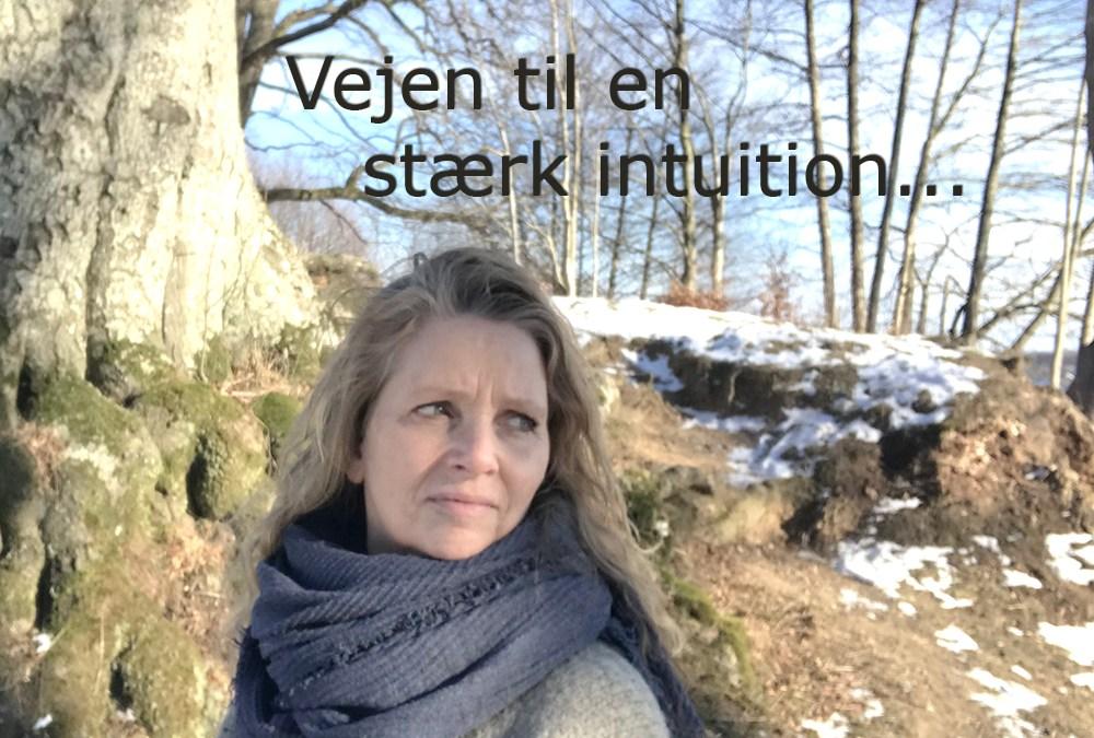 Vejen til en stærk intuition - Vibeke Ungstrup, Hillerød, Helsinge, Nordsjælland