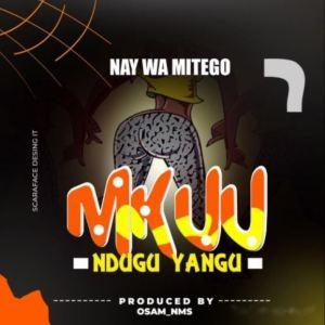 Download | Nay Wa Mitego – Mkuu Ndugu Yangu Mp3 Audio