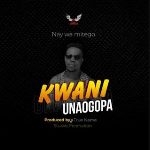 Download   Nay Wa Mitego - Kwani Unaogopa Mp3 Audio