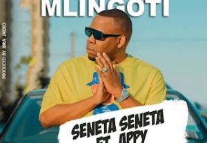 Download   Seneta Seneta ft. Appy – Nusu Mlingoti MP3 Audio