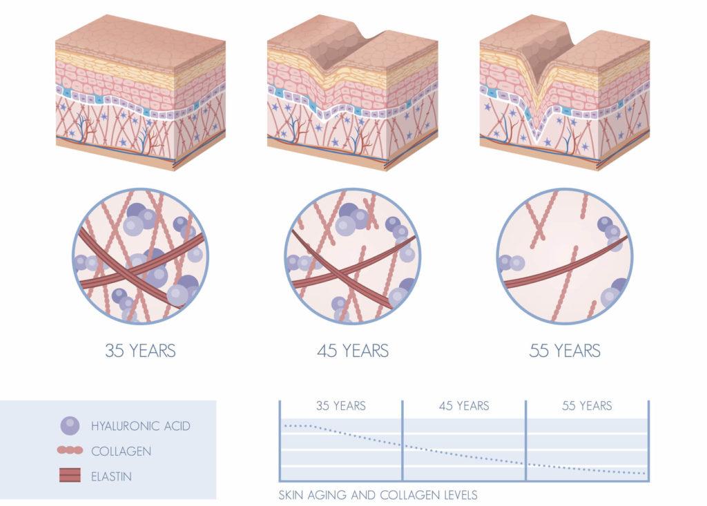 What Happens to Collagen as We Age - Vibrance MedSpa