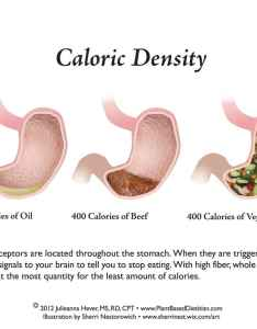 April also vibrance nutrition and fitness stomach chart caloric volume foods rh vibrancenutrition