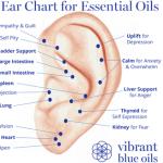 The Best Method of Applying Essential Oils