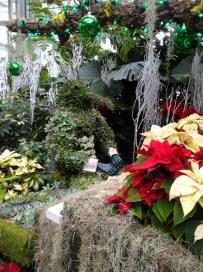 Penguin playing piano - topiary, Christmas show, Allan Gardens, Toronto, Canada.