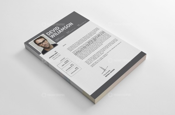 Stylish Resume CV Templates