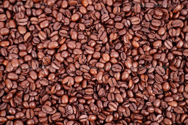 Coffee grains stock photo